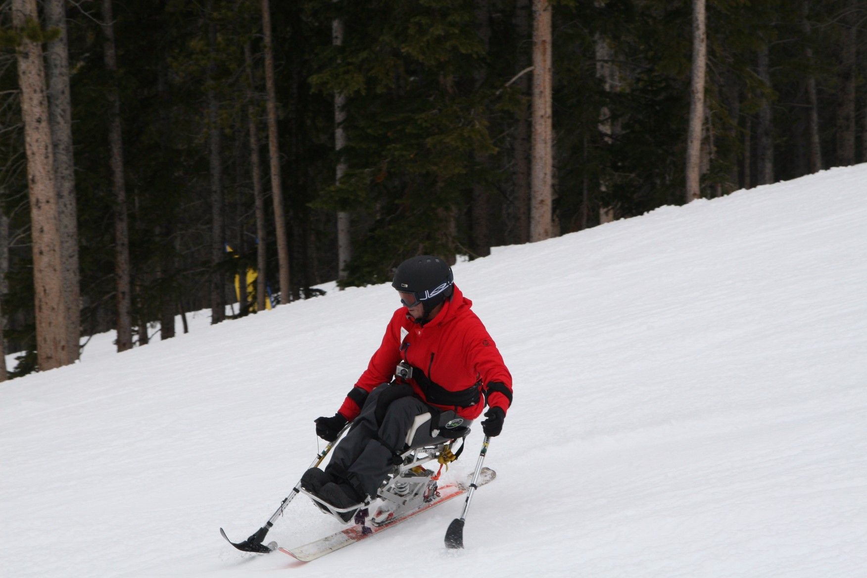 Alpine Adaptive Ski Program